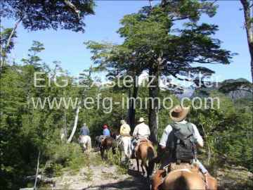 Patagonia property in Pucon nice romantic hotel / EfG 6177-K, 4920000 Pucon, Chile
