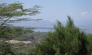 Land / Lots for sale in Naivasha-Naivasha, Kenya