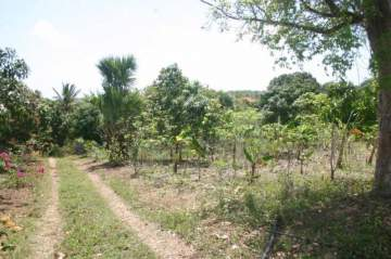 Villa / luxury real estate for sale in Palenque-Karibik, Dominican Republic