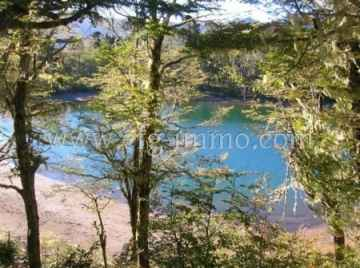 La Araucania 257 ha land of native forest, lake / EfG 7935-CLS, 4900000 Melipeuco, Chile