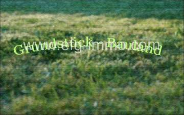 Tachlovice 20 hectares for building of houses / EfG 8191-S, 25217 Tachlovice, Czech Republic