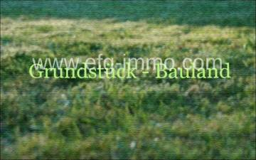 Central Bohemia land 9.2 acres for commercial / EfG 8193-S, 28002 Kolin, Czech Republic