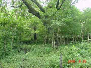 Green area, recreational land for sale in Las Juntas de Abangares Guanacaste, Costa Rica