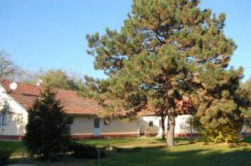 Holiday Rentals for rent in Kunszállás, Hungary