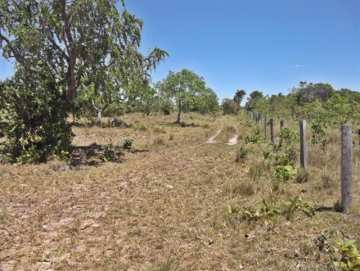 Farm / Ranch for sale in Palmeirante, Brazil