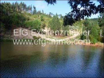 Property land/forestry for sale in Brejões-Nordeste, Brazil