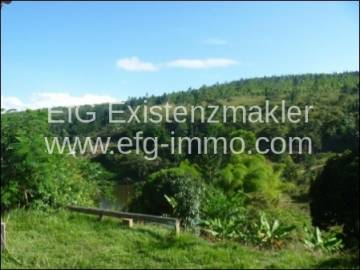ale 100 hectares of native forest | EfG 10394-100-, 45325-000 Brejões, Brazil