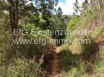 Farm / Ranch for sale in Santa Ines-Nordeste, Brazil