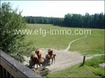 South Bohemia 12 hectares of land / EfG 10755-S, 37001 Ceske Budejovice, Czech Republic