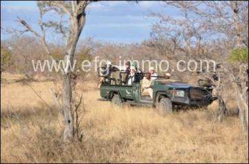 Wildlife Farm mit den Big Five