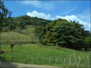 Yamasa Farm 124.64 ha with pasture, house / EfG 250803-DJH, 92000 Yamasá, Dominican Republic