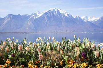 Hotel for sale in Montreux-Genfer See, Switzerland