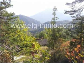 Massoins organic farm near Nice and Monaco / EfG 11374-K, 06710 Massoins, France