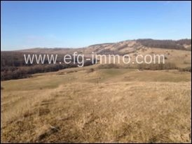Farm / Ranch for sale in Braşov-Centru, Romania
