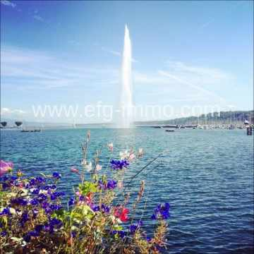 Hotel for sale in Geneva-Genfer See, Switzerland