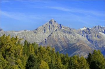Valais Guesthouse B & B with panoramic views / EfG 11612-S, 3925 Grächen, Switzerland