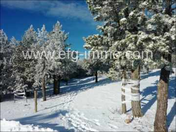 Hotel in the ski resort to lease / EfG 11965-RES, 44001 Teruel, Spain