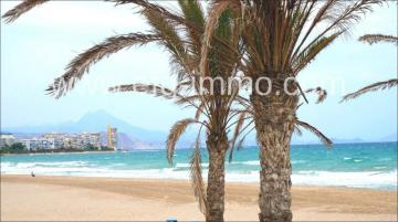 Hotel Lease in Alicante-Costa Blanca, Spain
