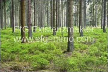Farm / Ranch for sale in Baia Mare-Nord-Vest, Romania