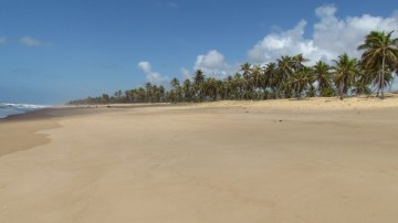 Beach Property with 500.000 m² in Bahia for Sale or Partnership, 48190-000 Entre Rios, Brazil