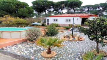 Farm / Ranch for sale Bonares/Malaga,  Bonares, Spain