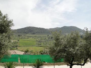 Villa / luxury real estate for sale in Coín, Spain
