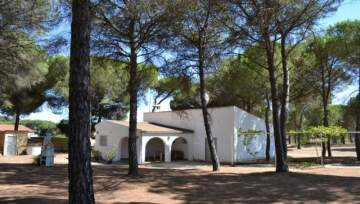 Farm / Ranch for sale Bonares/Huelva,  Bonares, Spain