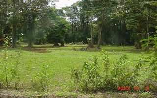 Green area, recreational land for sale in Cahuita, Costa Rica