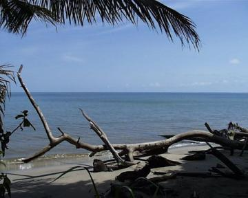 Green area, recreational land for sale in Ostional, Costa Rica