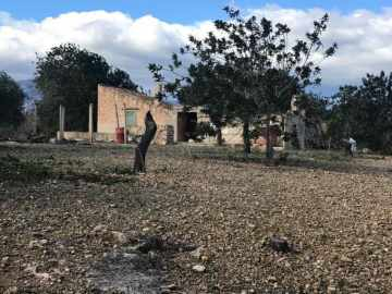 Houses / single family for sale in Tortosa, Spain