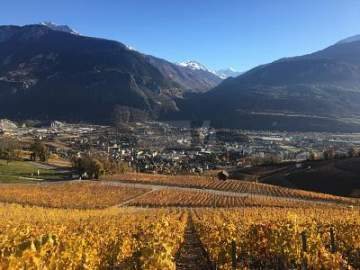 Land / Lots for sale in Venthône, Switzerland