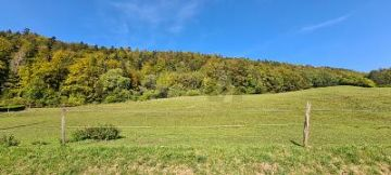 Land / Lots for sale in Reconvilier, Switzerland